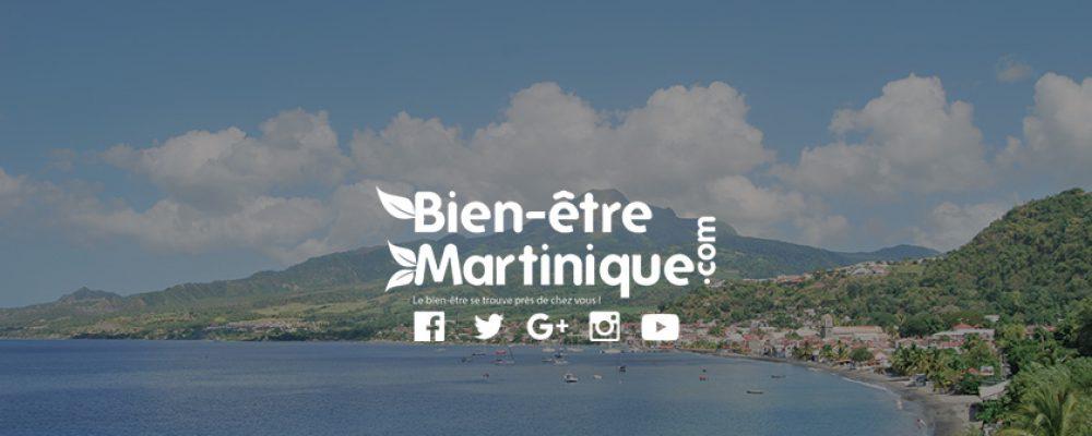 Bienvenue sur Bien-etre-martinique.com